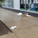 pet store trash on driggs brwn n10th and n 11th