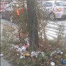 arizona bottle and other trash near Javits center