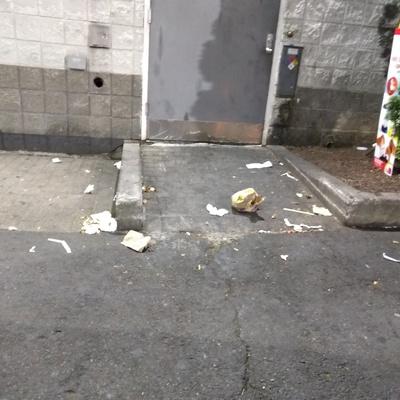 Trash near 14-49 31st Drive, New York City
