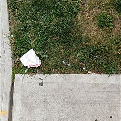 Trash near 634 City Island Avenue, New York