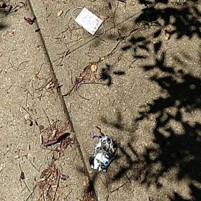 Trash near 150-15 85th Avenue, New York