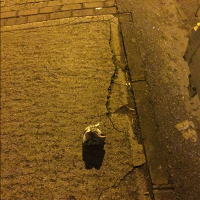 Trash near Çelebi Mehmet Lisesi, İpekçilik Caddesi, Kurtoğlu Mahallesi, Karaağaç Mahallesi, Yıldırım, Bursa, Marmara Region, 16010, Turkey