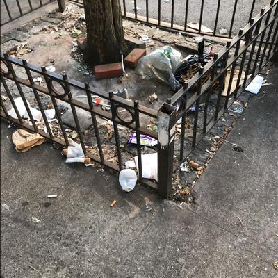 Trash near 1405 5th Avenue, New York