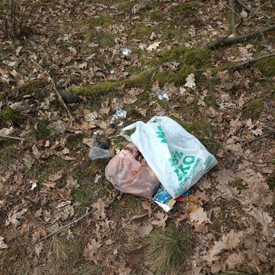 Trash near 18 Pawła Jana Sapiehy, Warsaw