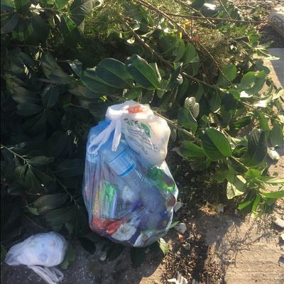 Trash near Düzlük, Yeniköy, Başiskele, Kocaeli, Marmara Region, 41275, Turkey
