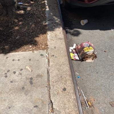 Trash near 446 East 117th Street, New York