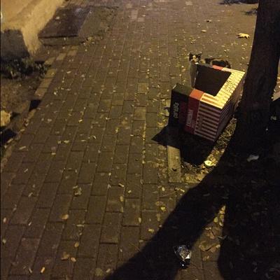 Trash near Eşrefliler Caddesi, Mollaarap, Mollaarap Mahallesi, Karaağaç Mahallesi, Yıldırım, Bursa, Marmara Region, 16010, Turkey