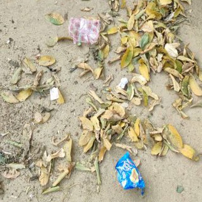 Trash near Dudhi, Sonbhadra, Uttar Pradesh, 231208, India