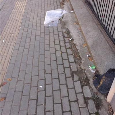 Trash near Sanayi Çevre Yoyu Caddesi, Demirtaş Organize Sanayi Bölgesi, Demirtaş Dumlupınar, Demirtaş Dumlupınar Mahallesi, Osmangazi, Bursa, Marmara Region, 16245, Turkey