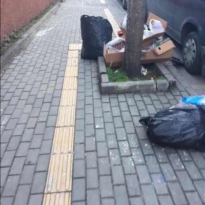 Trash near Maksem Caddesi, Maksem, Maksem Mahallesi, Osmangazi, Bursa, Marmara Region, 16010, Turkey