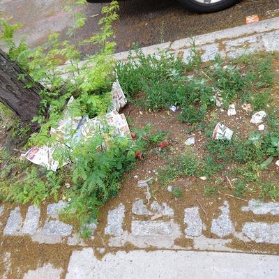 Trash near 29-10 14th Street, New York City