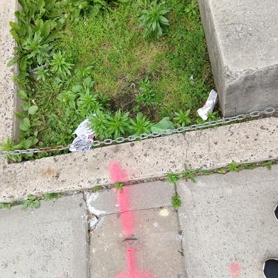 Trash near Public School 171, 30th Avenue, Astoria, Queens County, New York City, New York, 11102, USA