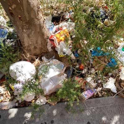 Trash near 181 East 120th Street, New York
